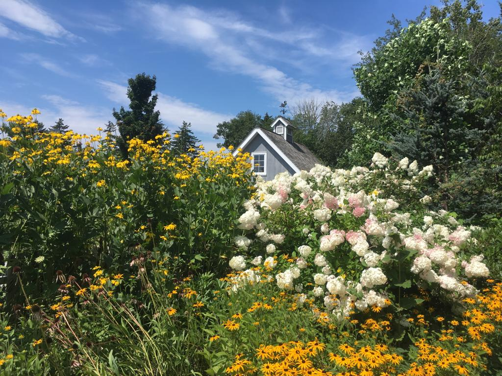 Boothbay Harbor botanical garden
