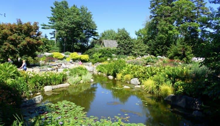 coastal Maine botanical garden
